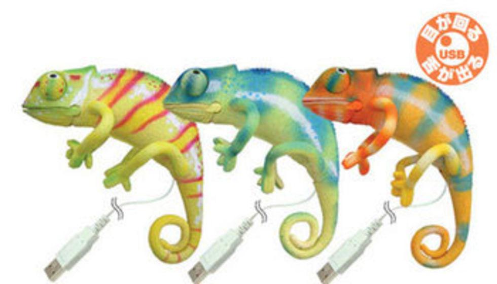 USB-kameleont