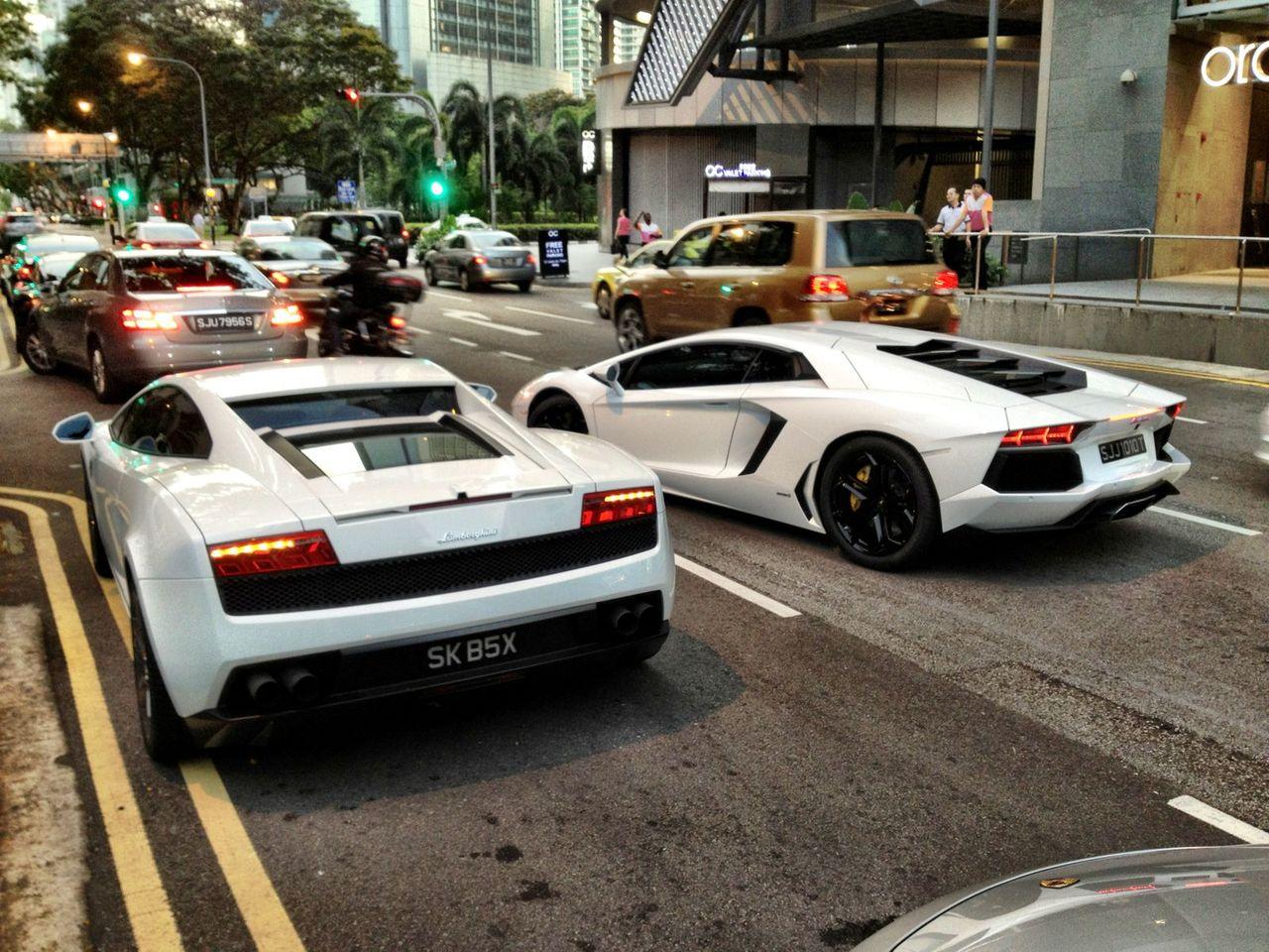 Två tjurar i Singapore