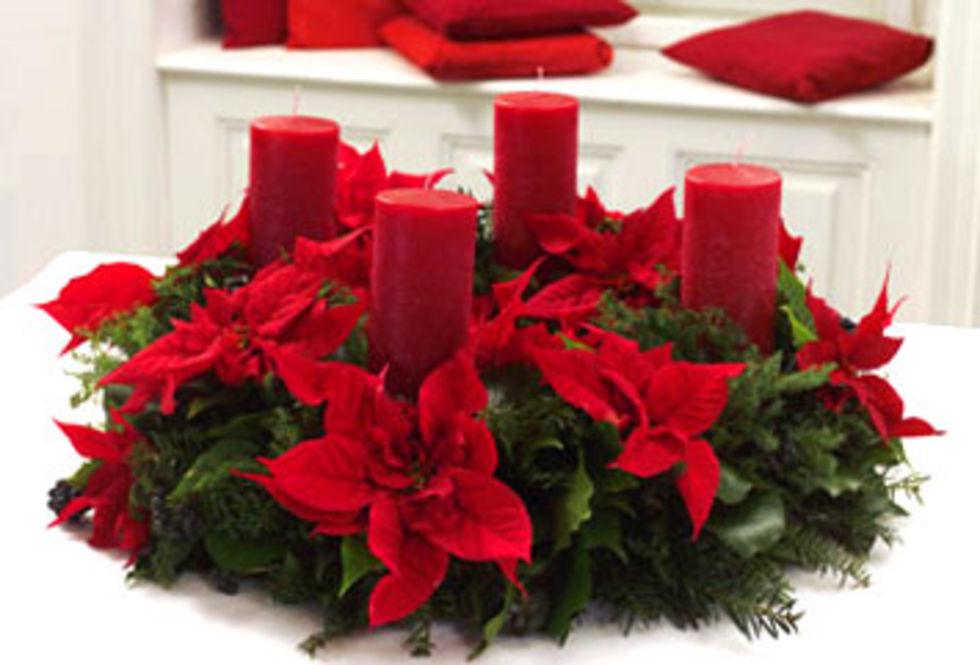 Snygga dekorationer med Julstjärnor