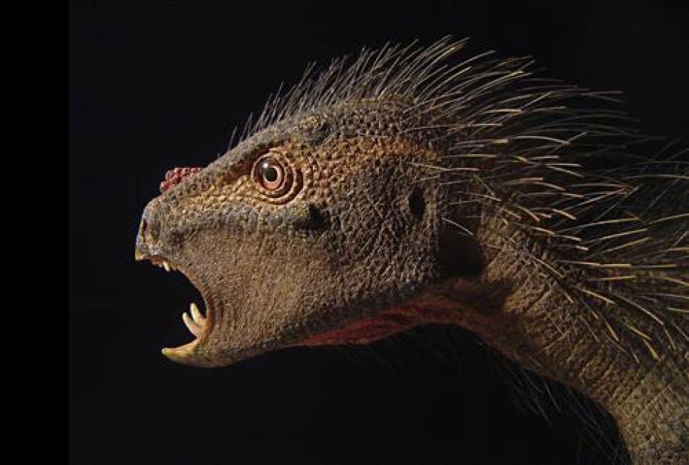 Ny pytte-dinosaurie upptäckt i Afrika