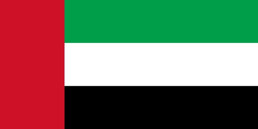 Förenade Arabemiraten förbjuder kritik av regeringen på nätet