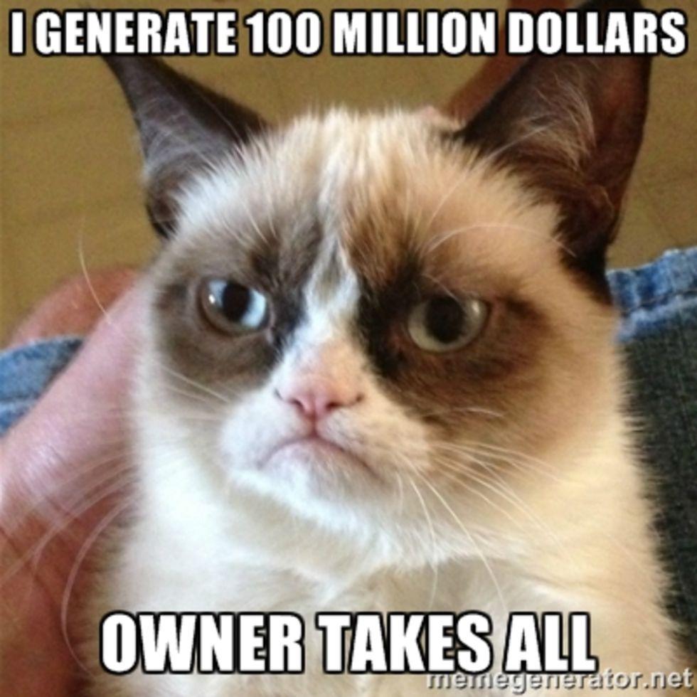 Lönsamt med katt