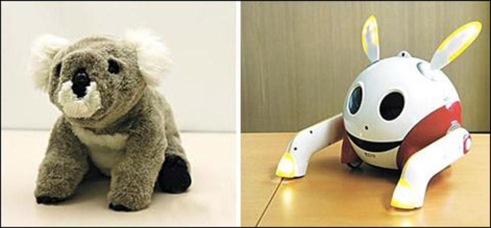 Kobie och Rabie - nya robotar från Sydkorea