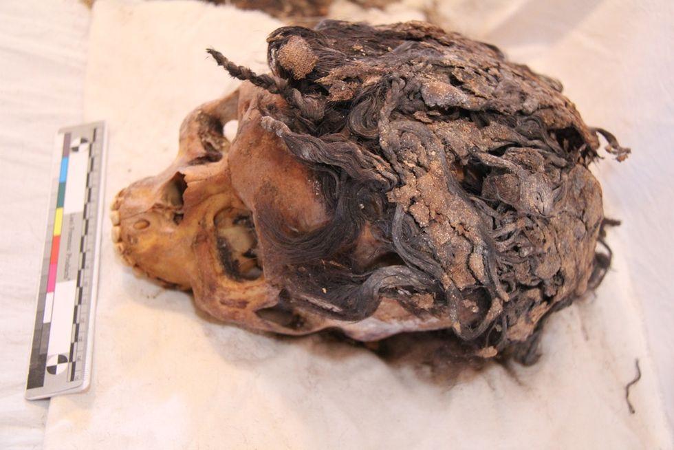 3 300 år gammal kvinna hade extensions