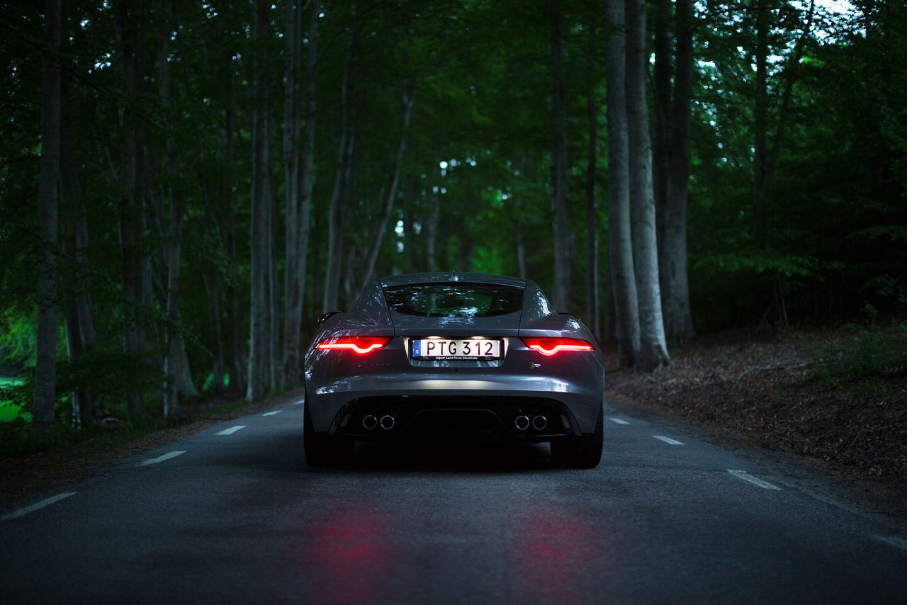Jaguar varumärkesskyddar EV-Type