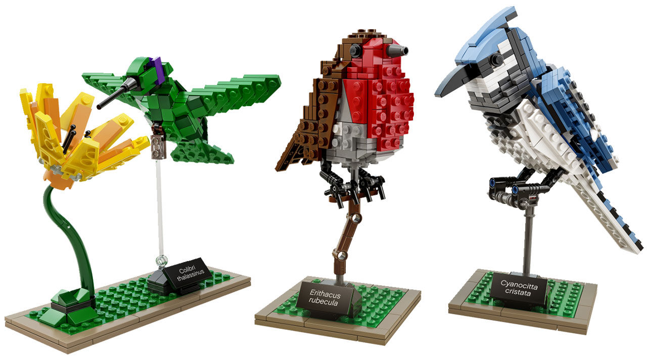 Första bilderna på LEGO:s fåglar