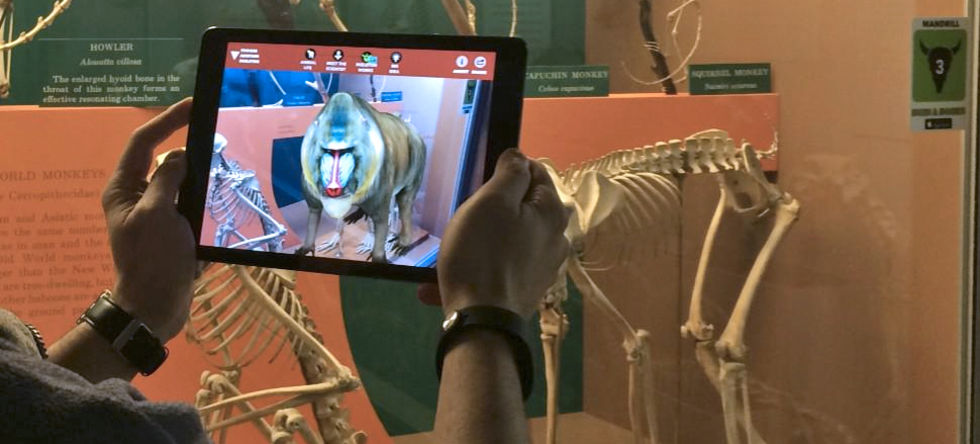 Cool augmented reality-app från Smithsonian  Natural History Museum
