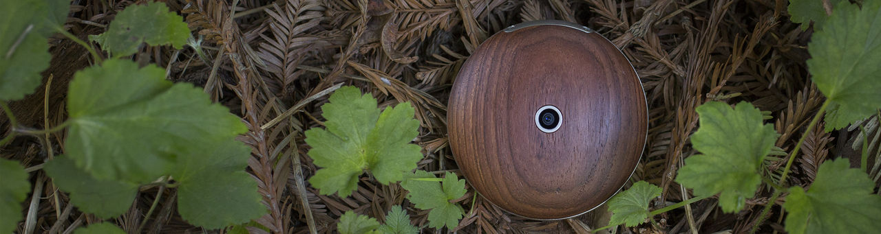 Runcible är en rund mobiltelefon