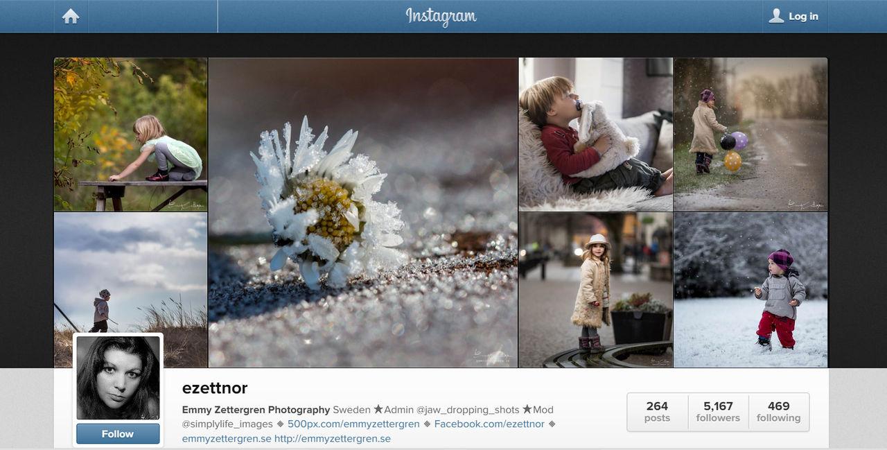 Konstnär tjänar storkovan på stulna Instagrambilder