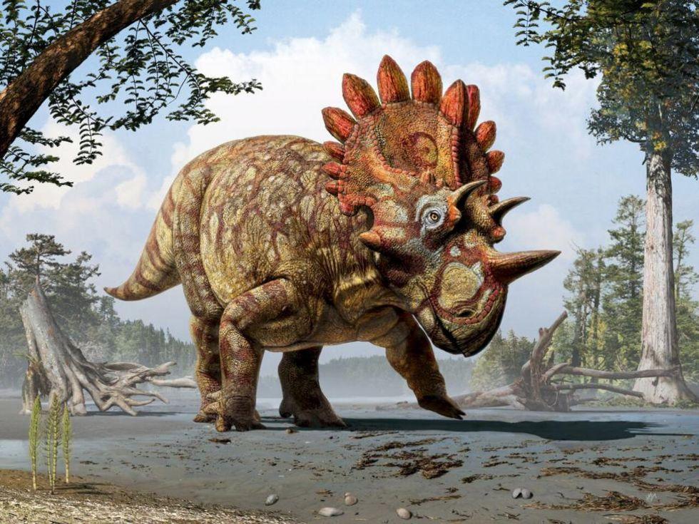 Säg hej till dinosaurien