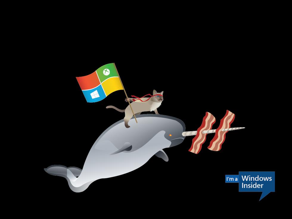 Windows 10 har installerats på 14 miljoner enheter
