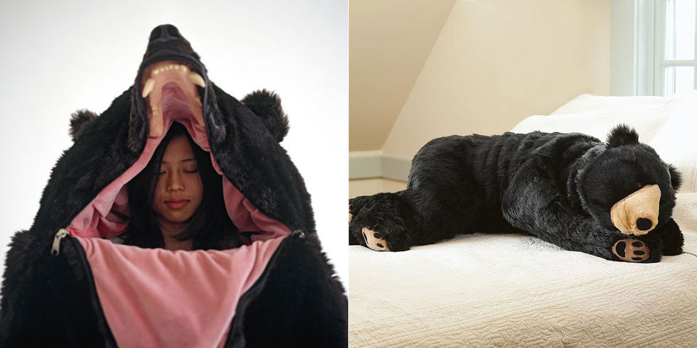 Slagga i en björn