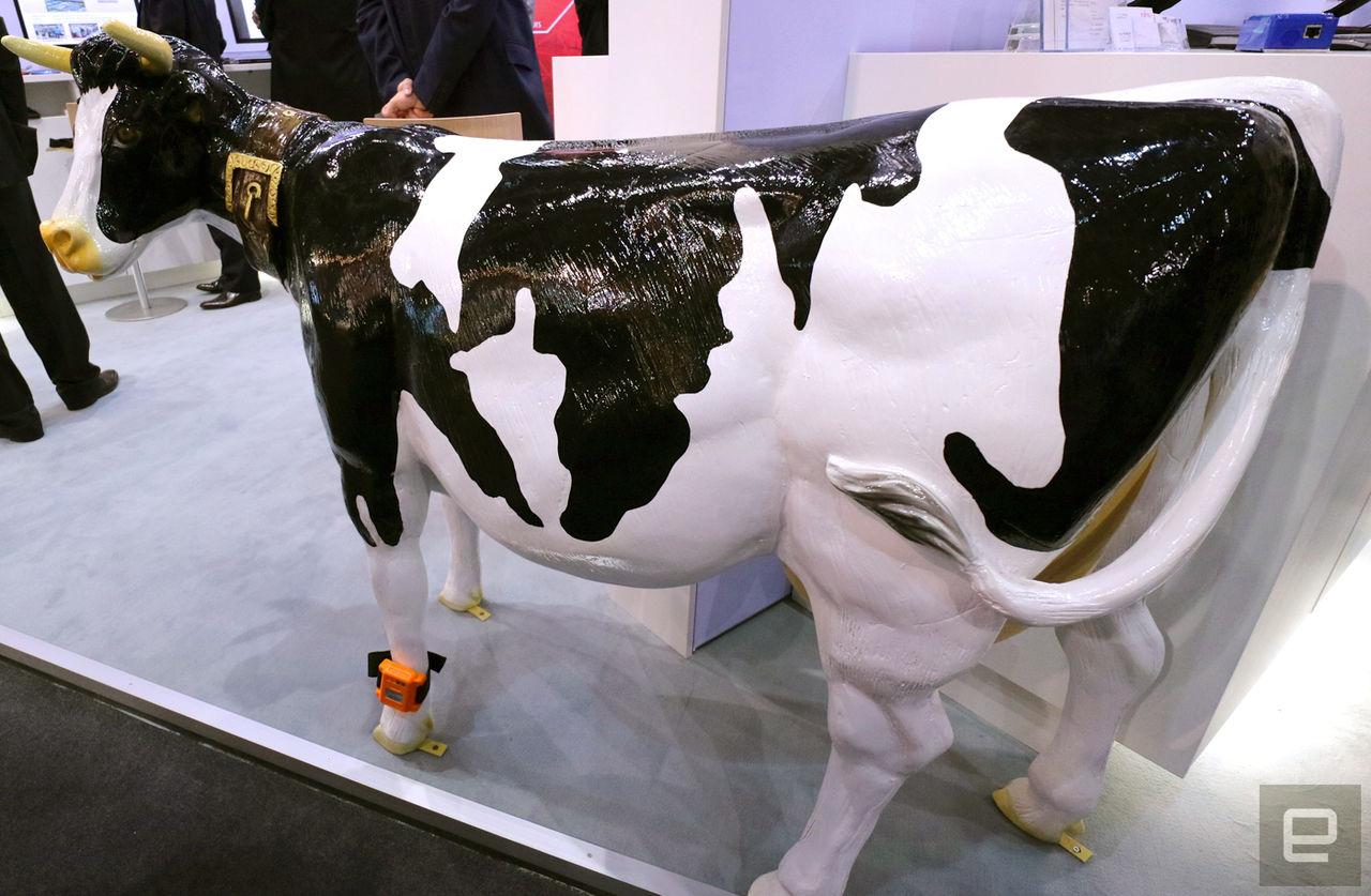 Fujitsu har tagit fram en wearable för kossor