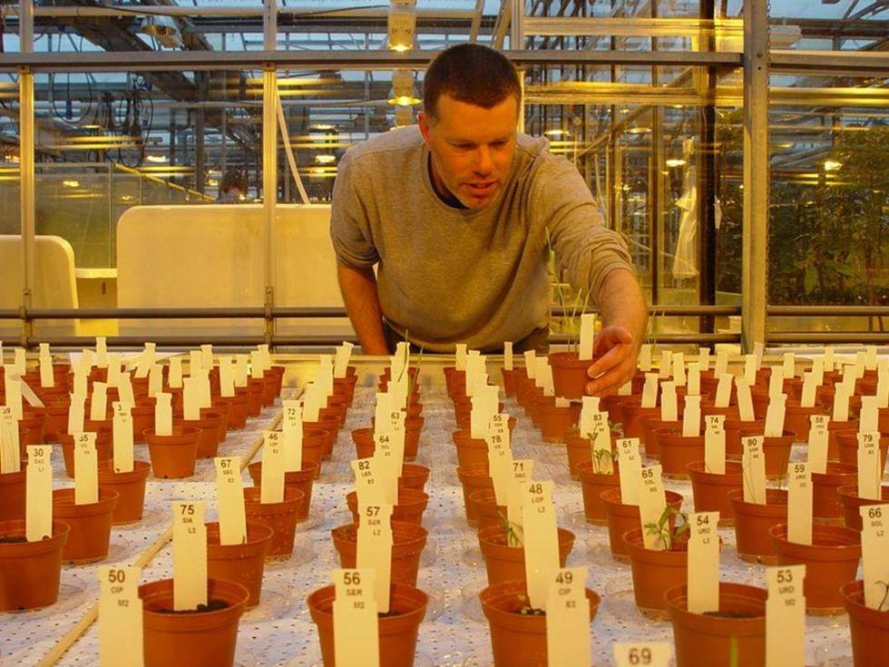 Forskare har lyckats få saker att växa i simulerad mars-jord