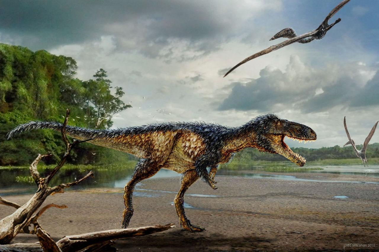 Släkting till Tyrannosaurus Rex upptäckt i Uzbekistan