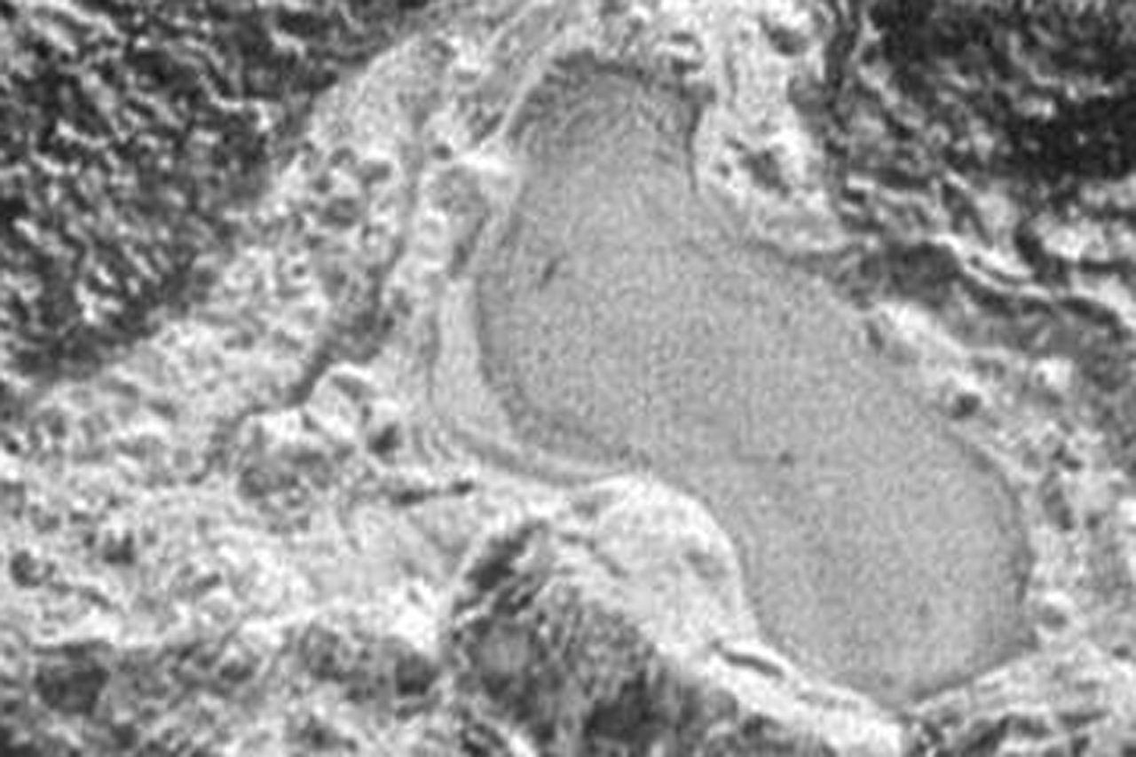 New Horizons har fotat en frusen sjö på Pluto