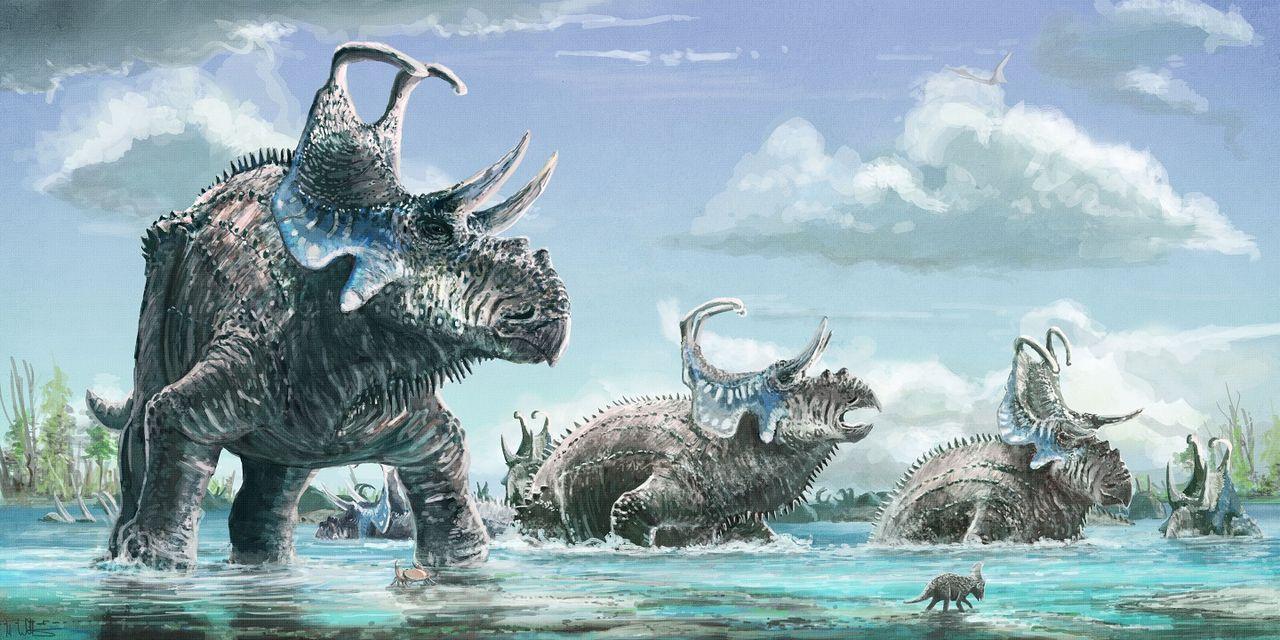 Två nya dinosauriearter med horn upptäckt i västra USA