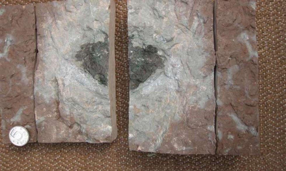 Unik meteorit hittad i svenskt kalkbrott