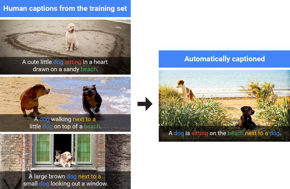Google har förbättrat AI för bildigenkänning