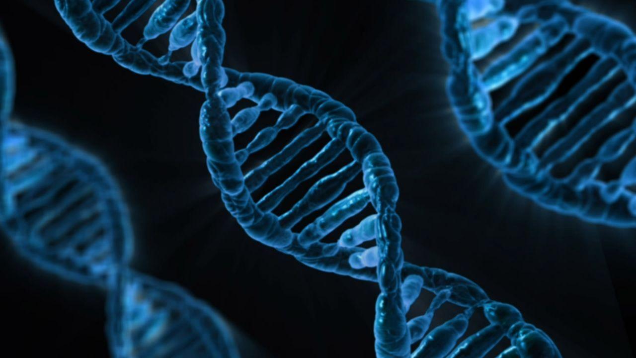 Svensk forskare försöker ändra DNA på mänskliga embryon
