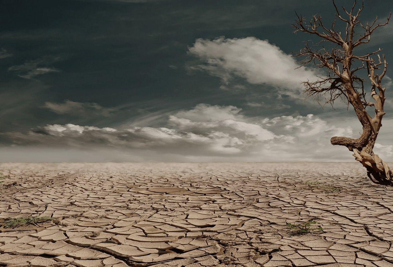 Extrema klimatfenomen väntas fortsätta under 2017