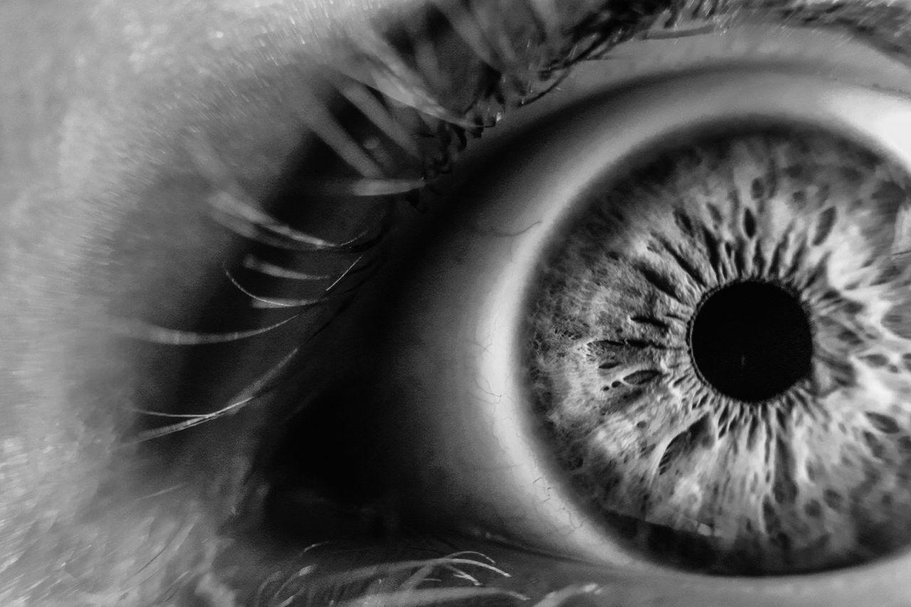 Världens första stamcellsdonation för ögon genomförd