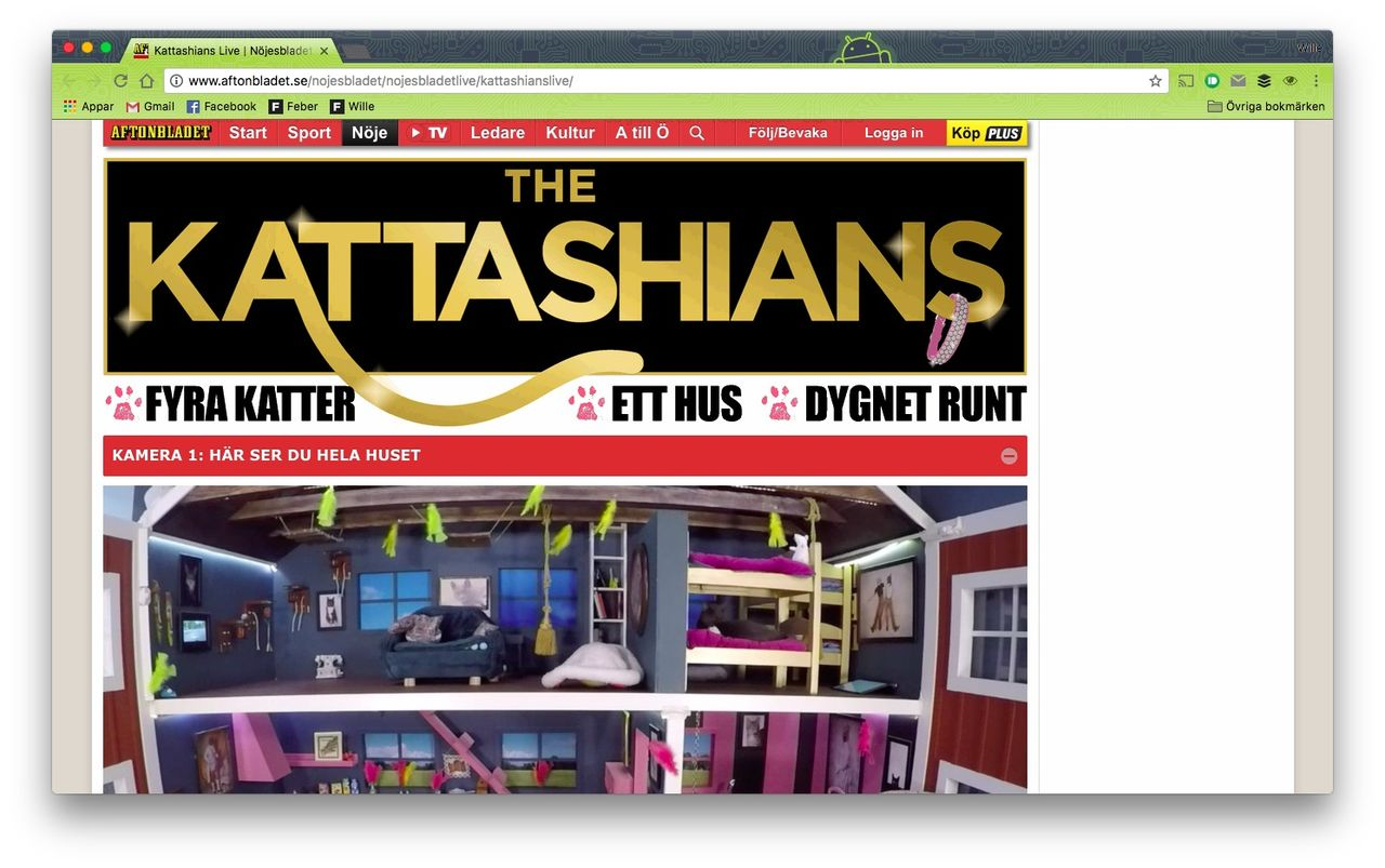 The Kattashians är Big Brother för katter
