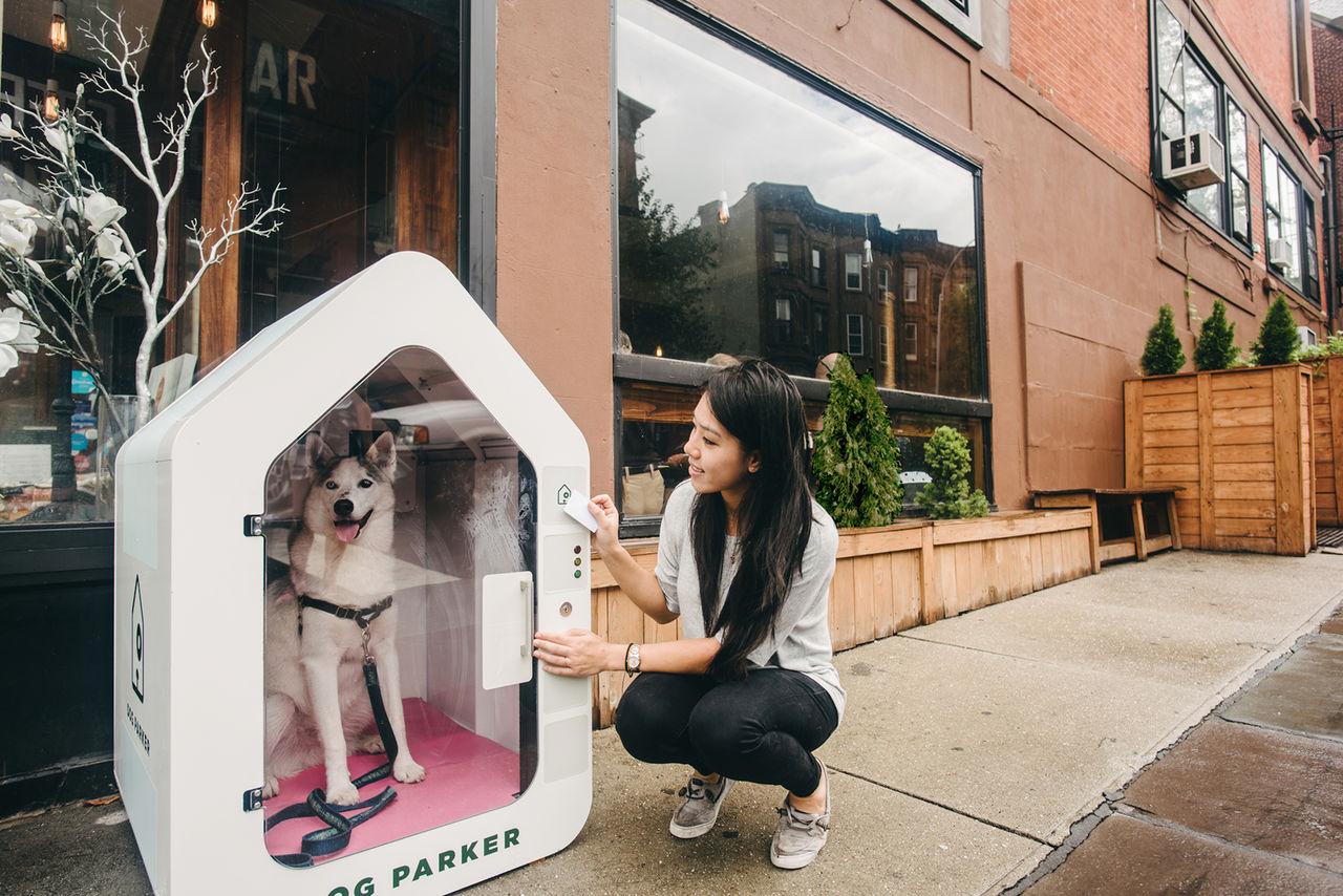 Parkera din hund med Dog Parker
