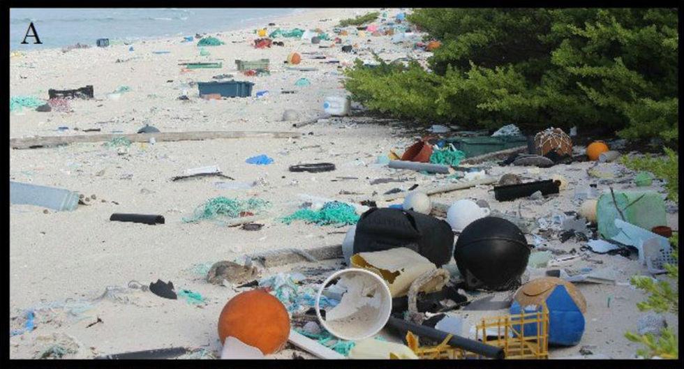 Henderson Island är en skräpig ö i Stilla Havet