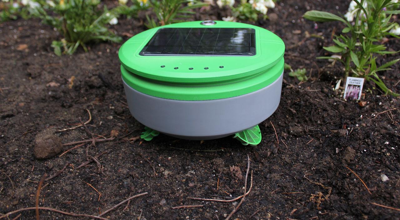 Tertill är en soldriven robot som rensar ogräs