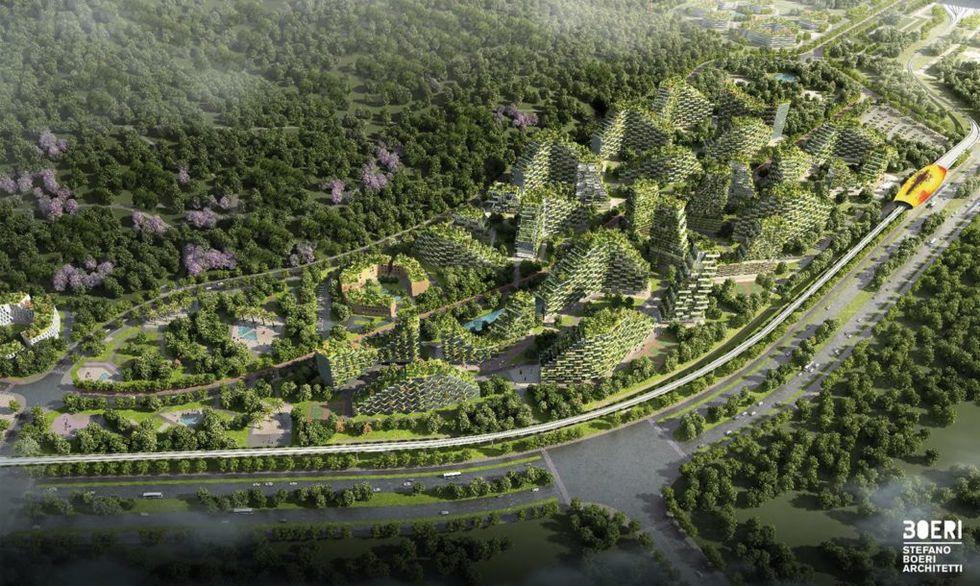 Kina bygger en skogsstad