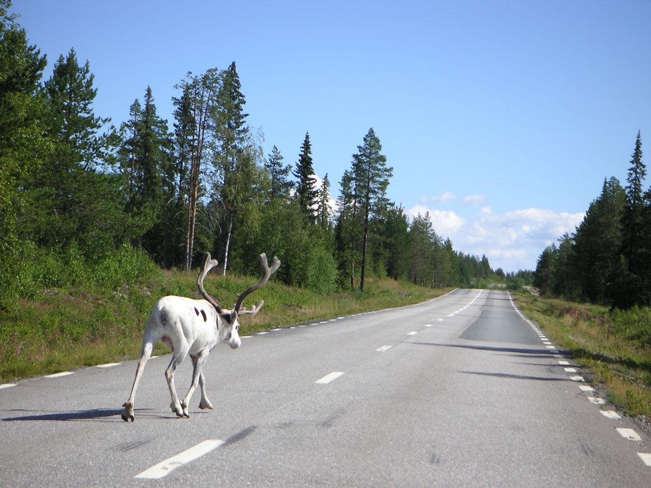 Så är skicket på vägarna i Sverige
