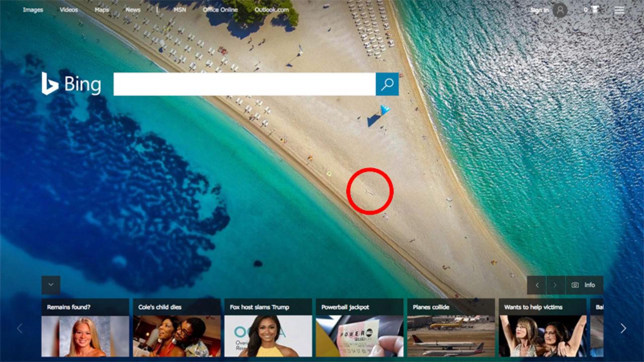 Bing missade sandsnopp