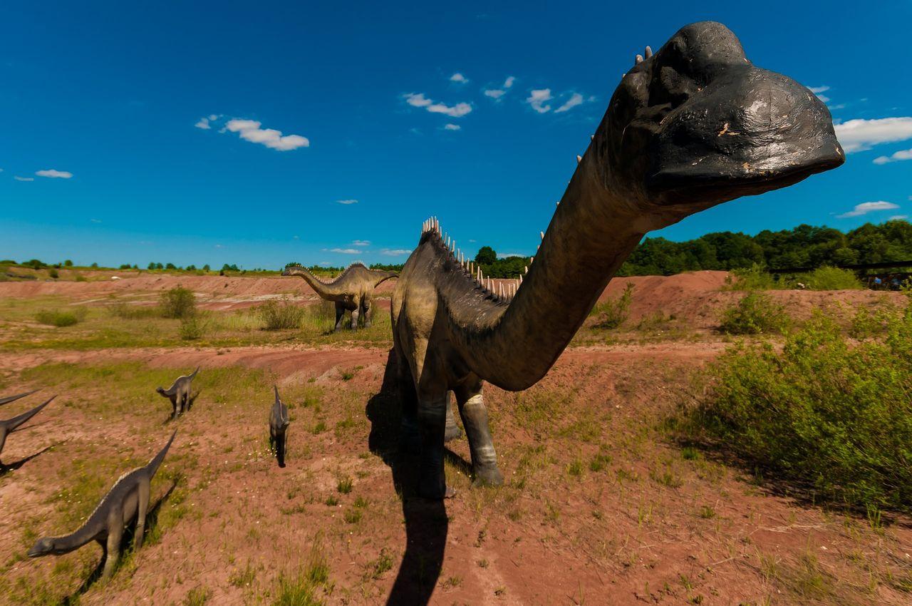 Vissa växtätande dinosaurier åt kött