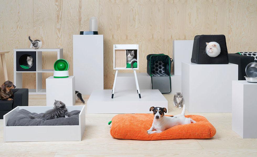 Nu börjar IKEA göra möbler för djur!