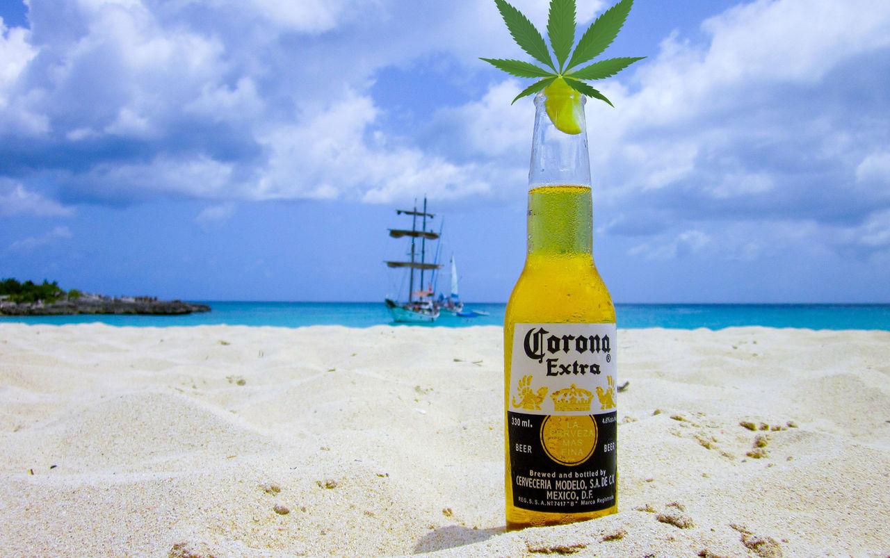 Amerikanskt ölföretag ger sig in cannabis-branschen