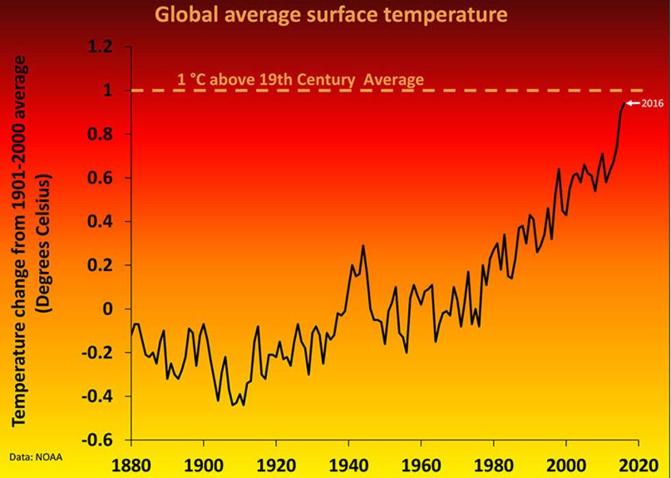 2017 ser ut att bli ännu ett rekordvarmt år