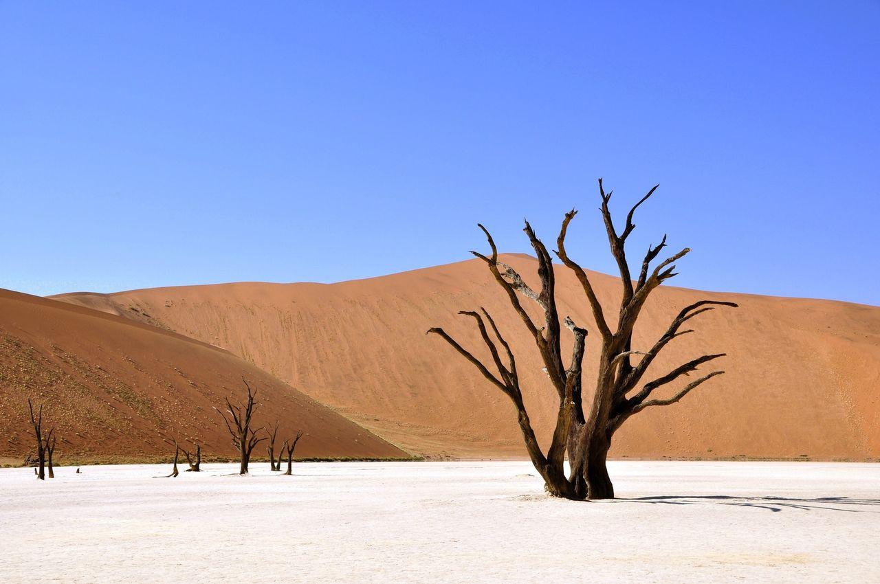 U-länder frustrerade över pågående klimatmötet COP23