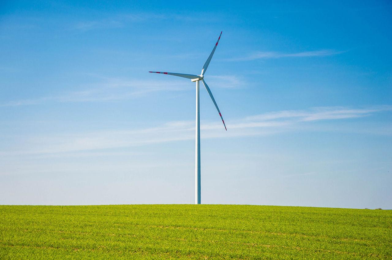 Google drivs nu helt på förnybar energi