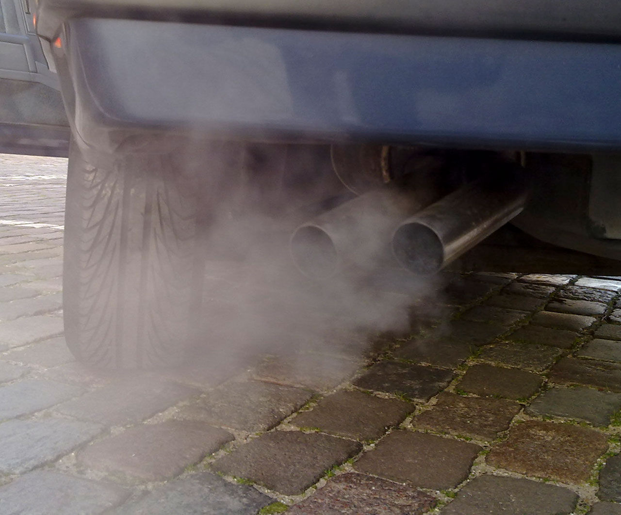 Apor och människor utsattes för dieselavgaser