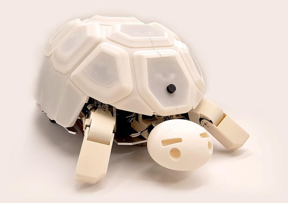 Robotsköldpadda lär barn att man inte ska slå robotar