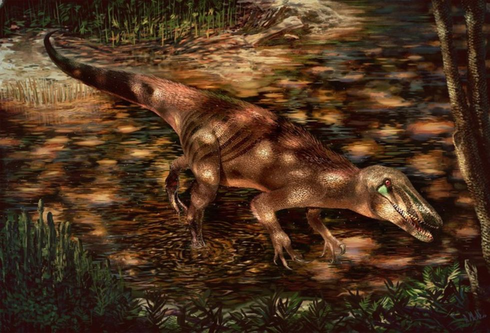 Ny dinosaurie-art hittad i Argentina