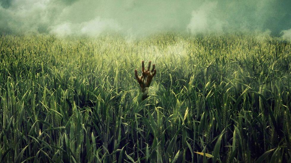 Netflix gör film av Stephen Kings In the Tall Grass