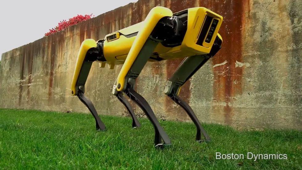 Roboten SpotMini börjar säljas nästa år