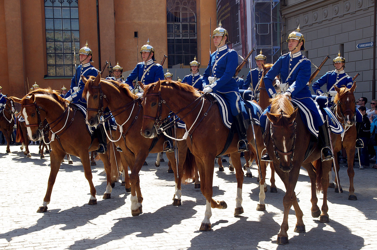Beridna Högvakten döper häst till D'Avicii
