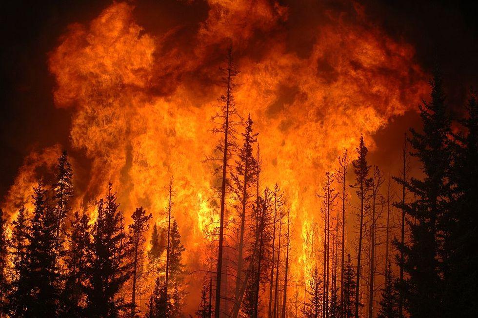 Bränderna i Sverige EU:s största räddningsinsats någonsin