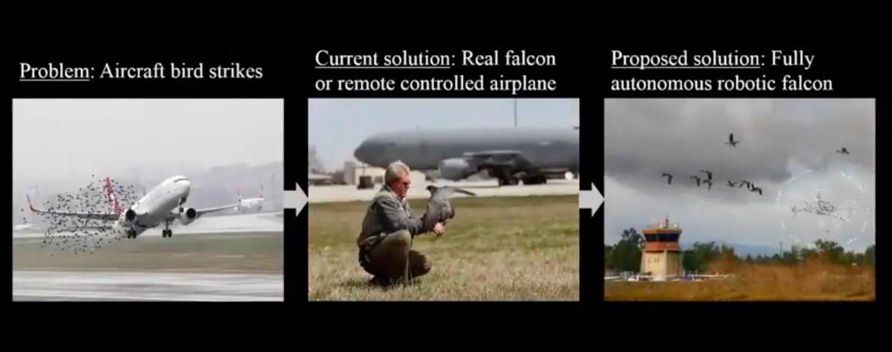 Drönare kan användas för att hålla fåglar borta från flygplatser
