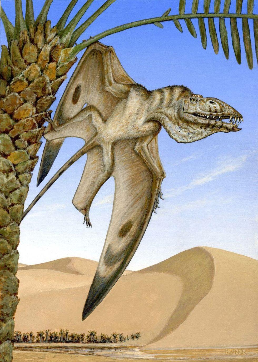 Ny pterosaurie-art hittad i Utah