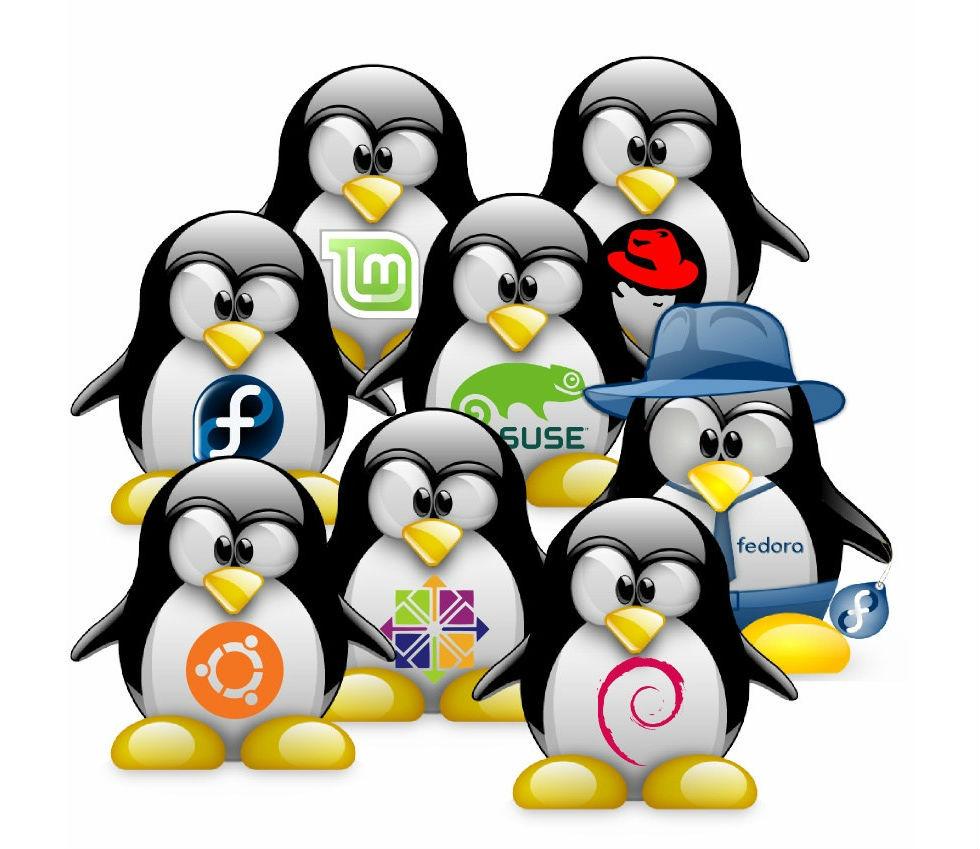 Linux-utvecklare inför ny uppförandekod
