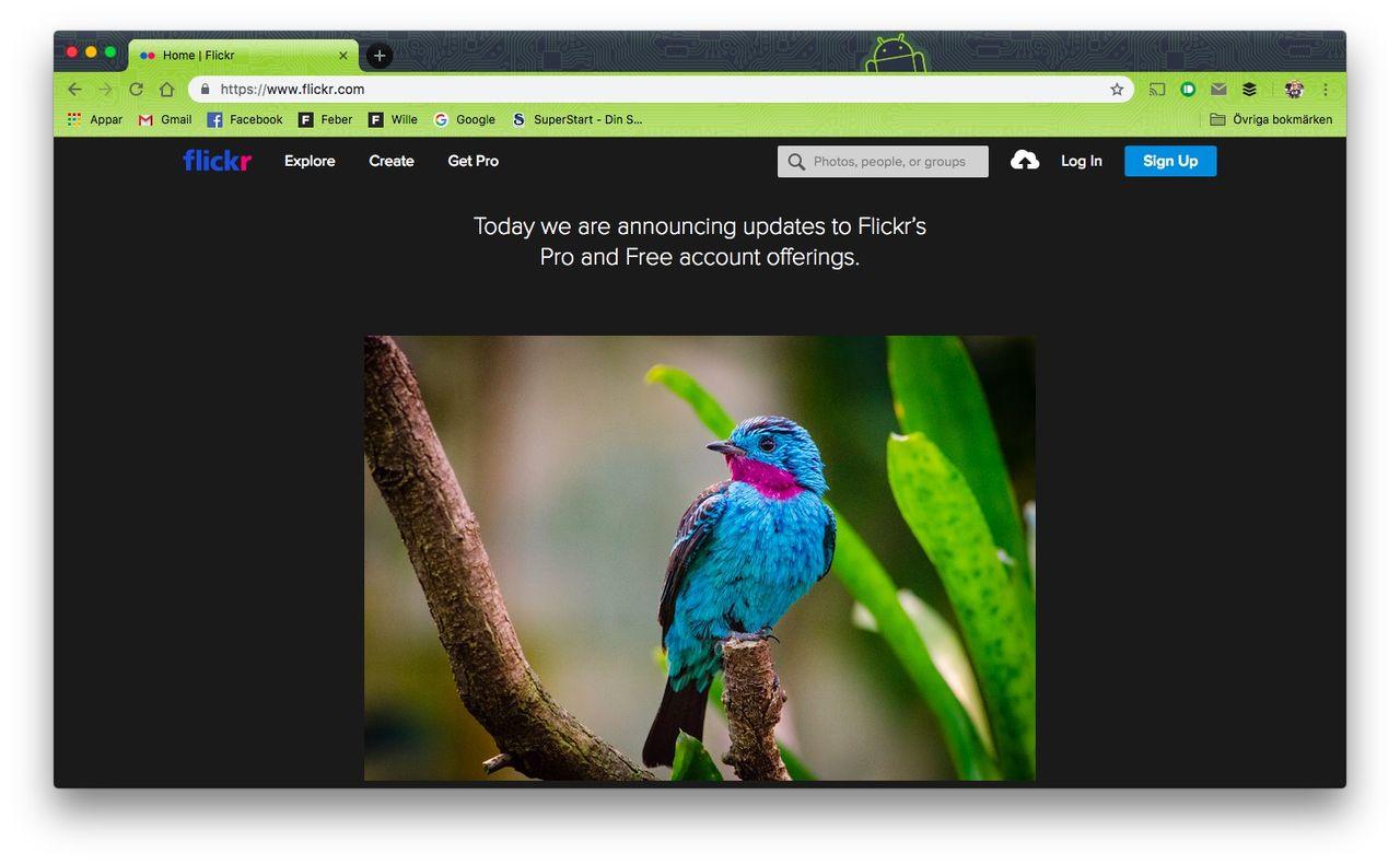 Fototjänsten flickr gör om sina abonnemang